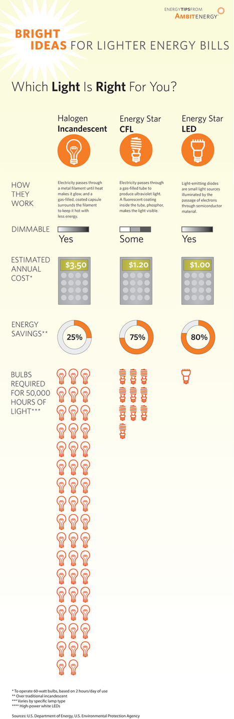 Infographic: Comparing Light Bulbs & Energy Savings | green infographics | Scoop.it