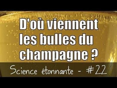 D'où viennent les bulles du champagne ? [Vidéo] | C@fé des Sciences | Scoop.it