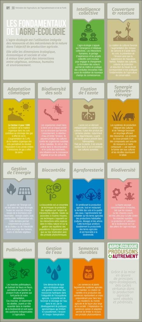 Infographie - Les fondamentaux de l'agro-écologie | Alim'agri | Agriculture durable | Scoop.it