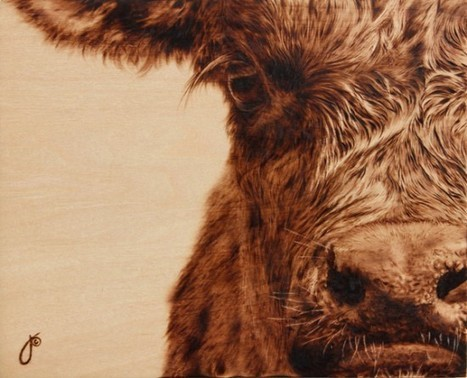 Mind-Blowing Animal Artworks Painted with Heat | Strange days indeed... | Scoop.it
