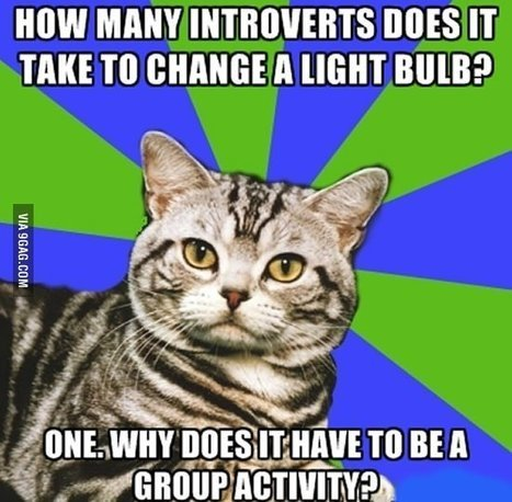 How many introverts... - 9GAG | Introverts Life and Business Guide | Scoop.it