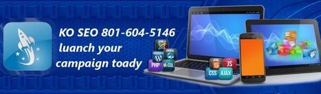 Search Engine Optimization | SEO Services Salt Lake City | SEO Company | Search Engine Optimization | SEO Services | Scoop.it