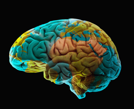 Mapping Emotions in the Brain - Huffington Post | Artificial Intelligence | Scoop.it