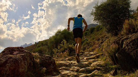 #Run Le top 5 de l'entraînement en nature | ParisBilt | Scoop.it