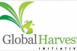 Global agricultural productivity stagnating, says new report: productive, sustainable agriculture must be prioritized | Cattle Network | Agriculture news & innovations | Scoop.it