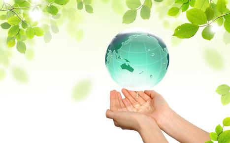 "Greenwashing: ""Du vert? Ca doit être bon!"" | greenwashing | Scoop.it"