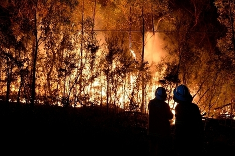 Climate Council's Code Red bushfire warning   Environment   Scoop.it