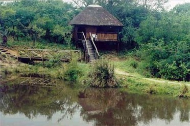 5 day Kruger Park Safaris | Kruger Tours from Johannesburg | Kruger & African Wildlife | Scoop.it