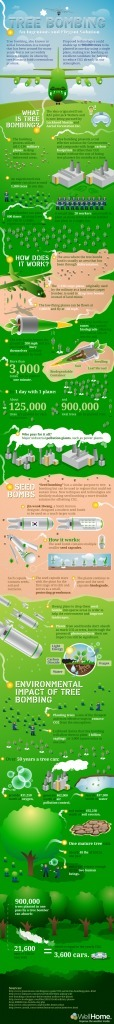 Tree Bombing [INFOGRAPHIC] | Infographics | Scoop.it