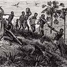 West African Slave Trade