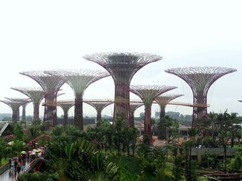 Huge Biomimetic 'Supertrees' Taking Root on Singapore's Waterfront (Video) | Vertical Farm - Food Factory | Scoop.it
