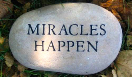 Website For $88? Miracle? REALITY! | Infinite Profit | Scoop.it