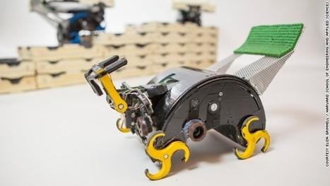 How termite-inspired robots could build for us   Post-Sapiens, les êtres technologiques   Scoop.it