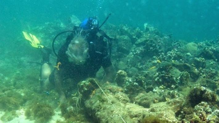 Le Santa Maria, vaisseau amiral de Christophe Colomb, aurait été retrouvé | Les Découvertes Acrhéologiques (Blog) | Kiosque du monde : Amériques | Scoop.it