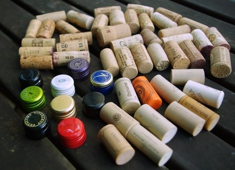 The world closures market in picture form   @zone41 Wine World   Scoop.it