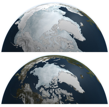 2014 Arctic Ice Limit Fifth-Lowest Ever Recorded - The Green Optimistic | Slash's Science & Technology Scoop | Scoop.it