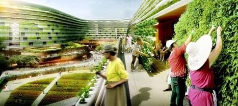 Murs maraîchers et toits fruitiers : les immeubles se muent en exploitations agricoles | architecture verte | Scoop.it