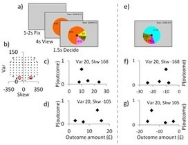 Dissociable Influences of Skewness and Valence on Economic Choice and Neural Activity | Social Foraging | Scoop.it