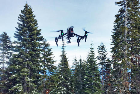 You Can't Use A Drone To Film Yourself Skiing But These Ex-Googlers Will Do It For You | Tourism Social Media | Scoop.it