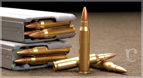 firearm ammunition | Upholstery cleaning orange county | Scoop.it