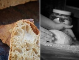 Sensitive to Gluten? Traditional Sourdough Offers a Unique Solution to Bread Woes | Fermenting | Scoop.it