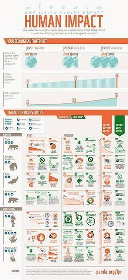 Living Planet Report 2013 -  Human Impact Infographics | Geography for All! | Scoop.it
