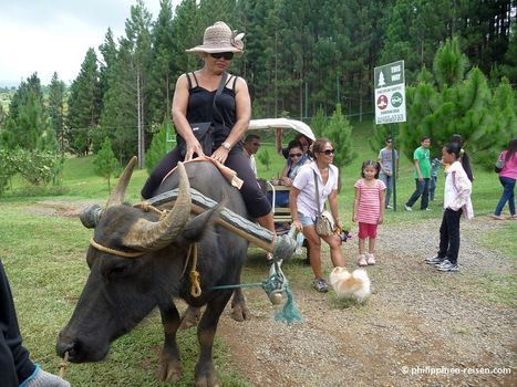 Adventure tour Asia with Thrillofasia..., Travel, vacation in Sunbury | Thrill Of Asia | Scoop.it