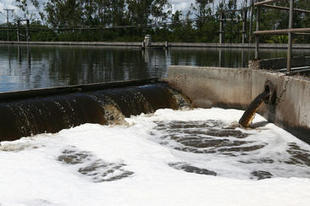 El agua gallega contiene concentraciones detectables de ansiolíticos y antidepresivos. | Bioquimica | Scoop.it