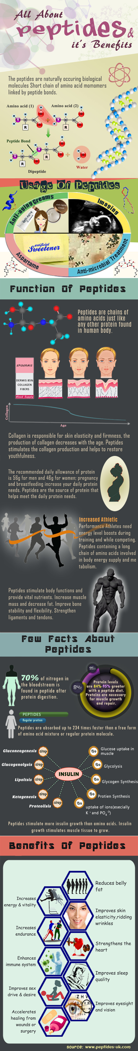 All about peptides and it's benefits | Scoops | Scoop.it