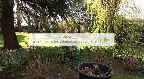 Reconnecter les citadins au sol agricole | Les colocs du jardin | Scoop.it