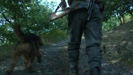Le chien appuie sur la gâchette, le chasseur perd la main | Drôles de faits divers... | Scoop.it