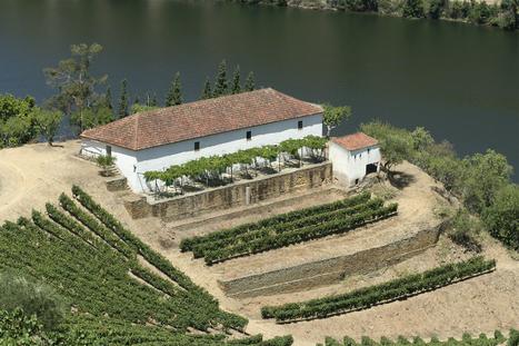 Quinta de Vargellas | The Douro Index | Scoop.it