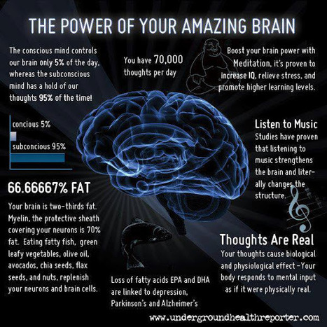 The Power of your Amazing Brain | The Technologically Enhanced Classroom | Scoop.it