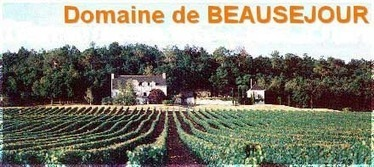 Domaine de Beauséjour AOC Chinon 3 | BEAUSEJOUR by BEAUSEJOUR | Scoop.it