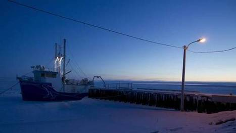 WORLDWIDE: Canada siding with U.S., Denmark on High Arctic fishing moratorium | Coastal Restoration | Scoop.it