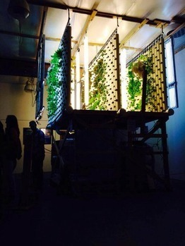 Aquaponics company launches hyper-local food in Bend - Sustainable Business Oregon | Vertical Farm - Food Factory | Scoop.it