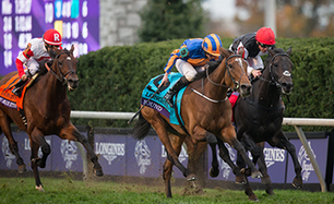 O'Brien fires three big guns at Yorkshire Oaks | Horse Racing News | Racing Post | Turf | Scoop.it