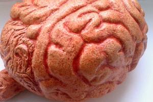 Das willentlich schlechte Gedächtnis | Weiterbildung | Scoop.it