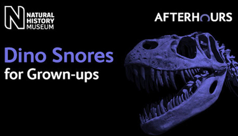Sleep tight at the National History Museum this March - Dino Snores for grown ups | London This Weekend | Scoop.it
