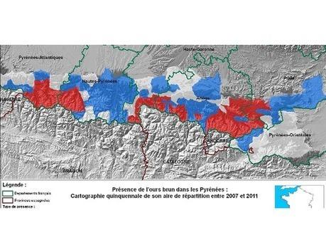 L'Europe met en demeure la France de protéger ses ours bruns   Biodiversité & Relations Homme - Nature - Environnement : Un Scoop.it du Muséum de Toulouse   Scoop.it