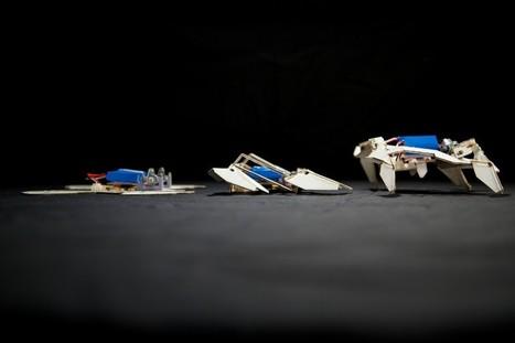Ρομπότ - οριγκάμι | Educational Board | Scoop.it