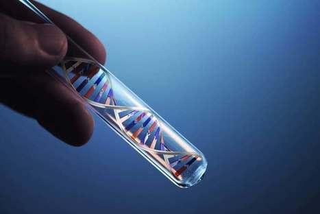 CRISPR-Cas9 gene-editing tool used in first human trial | Long Life | Scoop.it