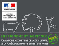Portail de l'Enseignement Agricole des Pays de la Loire - L'action à l'international des fédérations des MFR : exemples en Sarthe et Mayenne et en Maine-et-Loire   Les MFR dans la presse et sur le Web   Scoop.it