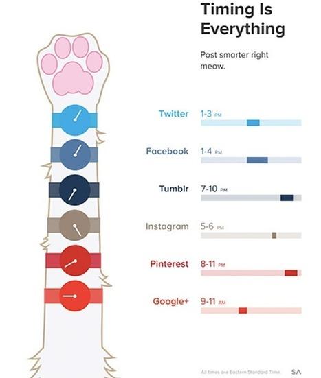 [Infographie] Quel est le meilleur moment de la journée pour poster sur les réseaux sociaux ? | transition digitale : RSE, community manager, collaboration | Scoop.it