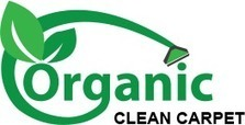 Professional Carpet Cleaning Service in New York | Organic Clean Carpet | Scoop.it