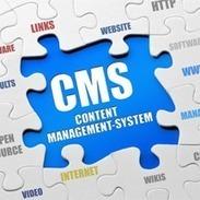 CMS Website Development, CMS Website Development Services - Digital Marketing | Bizz Digital Marketing | Scoop.it