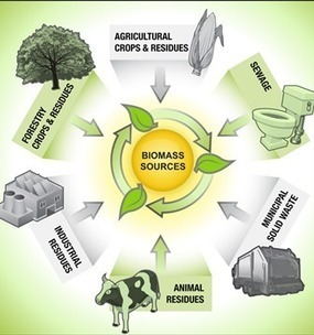 Biomass Energy | | Solar Energy Philippines | Solar Panel Philippines | Scoop.it