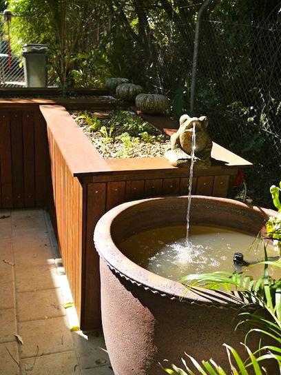 Cafeponics: bathtub aquaponics system for a Darwin cafe | Wellington Aquaponics | Scoop.it