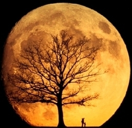The Supermoon Illusion | The brain and illusions | Scoop.it