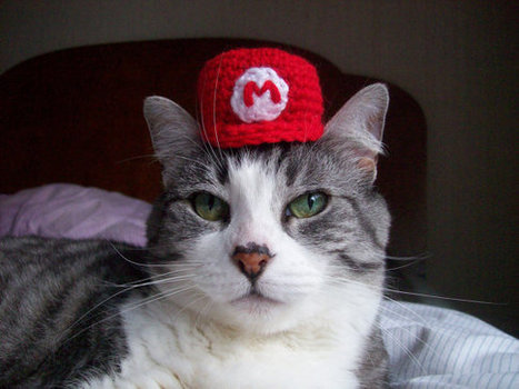 Super Mario Bros Hats for Cats   All Geeks   Scoop.it